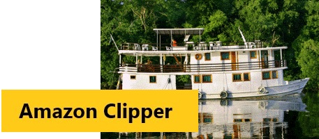 Amazon Clipper - For further details, click here!